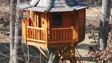 Tree-friendly & Safe Treehouses