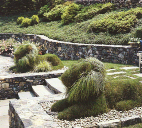Landscaping Topiary Ideas
