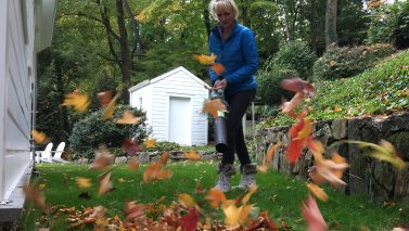5 Tips for Organic Fall Gardening