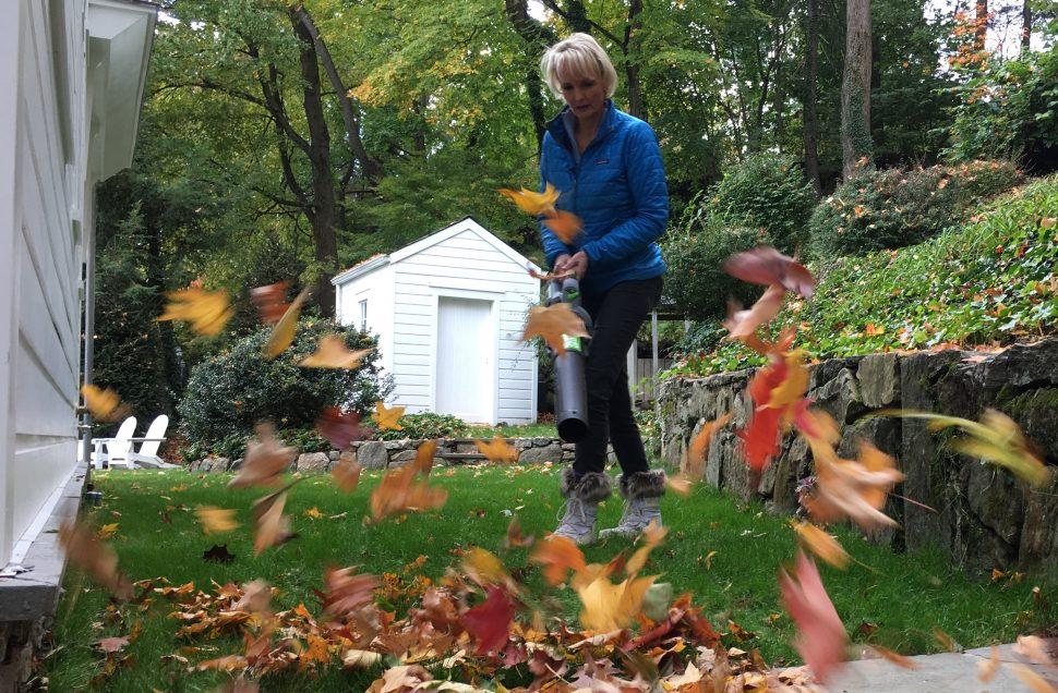 organic fall gardening