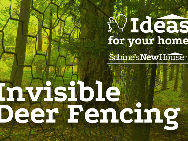 Invisible Deer Fencing